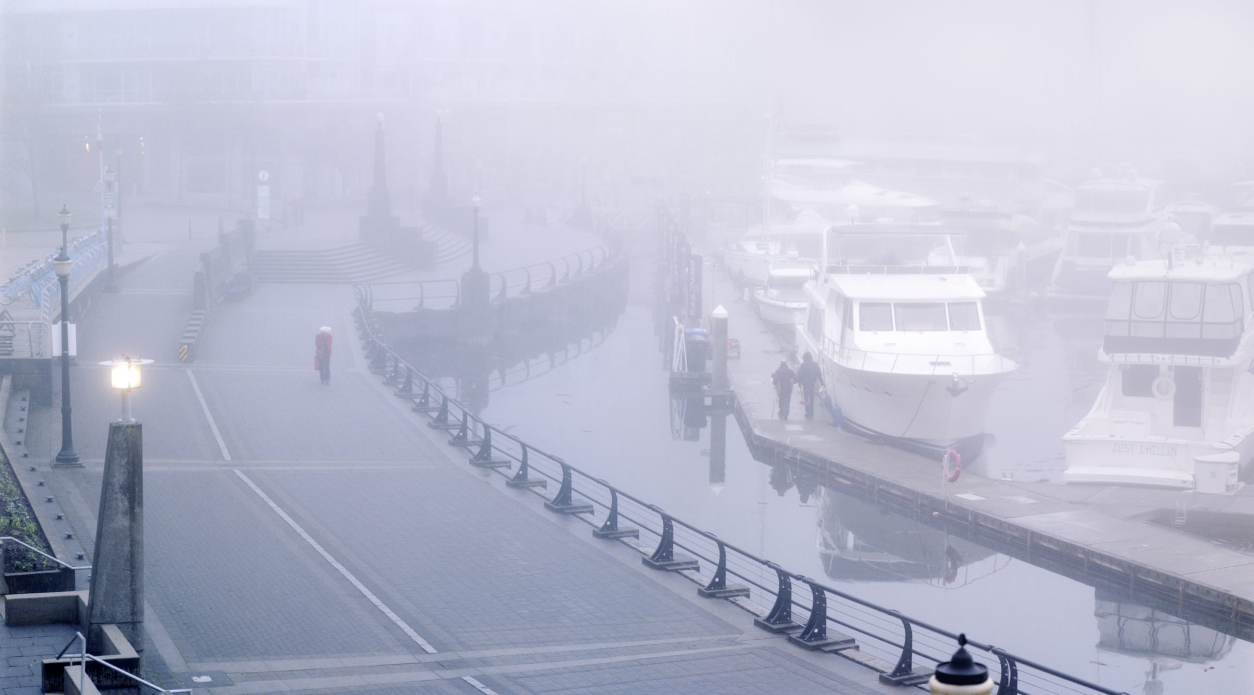 Woman_in_the_Fog_Small-scaled.jpg